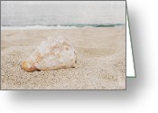 Beach Photographs Greeting Cards - The Secret Heart of Time Greeting Card by Sharon Mau