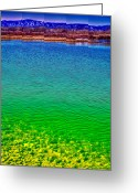 Flood Plain Greeting Cards - The Shallow End of Eaglewatch Lake Greeting Card by David Patterson