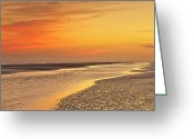 Digital Prints Greeting Cards - The Shallows Greeting Card by Phill  Doherty