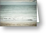 Florida House Greeting Cards - The Shore Greeting Card by Lisa Russo