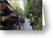 Scientists Greeting Cards - The Size Of A Truckload Of Redwood Logs Greeting Card by Michael Christopher Brown