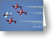 Team Greeting Cards - The Snowbirds Playing It Cool Greeting Card by Bob Christopher