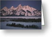Winter Trees Photo Greeting Cards - The Snowcapped Grand Tetons Greeting Card by Dick Durrance Ii