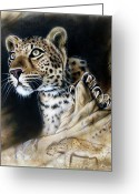 Cave Greeting Cards - The Source III Greeting Card by Sandi Baker