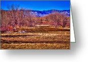 Flood Plain Greeting Cards - The South Platte Park Landscape Greeting Card by David Patterson