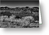 Flood Plain Greeting Cards - The South Platte Park Landscape II Greeting Card by David Patterson