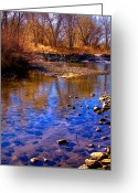 Flood Plain Greeting Cards - The South Platte River II Greeting Card by David Patterson