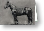 Jockeys Greeting Cards - The Standardbred Greeting Card by Thomas Allen Pauly