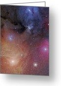 Interstellar Clouds Photo Greeting Cards - The Starforming Region Of Rho Ophiuchus Greeting Card by Phillip Jones