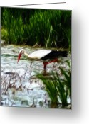 Grass Pastels Greeting Cards - The Stork Greeting Card by Stefan Kuhn