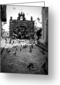 Puerto Rico Greeting Cards - The Street Pigeons Greeting Card by Perry Webster