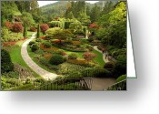 Digital-photography Photo Greeting Cards - The Sunken Garden At Butchart Gardnes Greeting Card by Darlyne A. Murawski