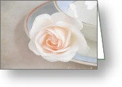 Indoors Home Greeting Cards - The sweetest rose Greeting Card by Lyn Randle