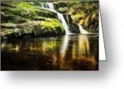 Swimming Hole Greeting Cards - The swimming hole Greeting Card by Bill  Wakeley