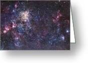 Interstellar Clouds Photo Greeting Cards - The Tarantula Nebula Greeting Card by Robert Gendler