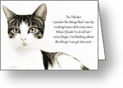 Fine Art Cat Greeting Cards - The Thinker Greeting Card by Andee Photography