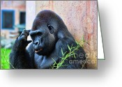 Lowland Greeting Cards - The Thinking Gorilla Greeting Card by Paul Ward