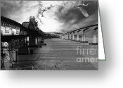 Eastbay Greeting Cards - The Three Benicia-Martinez Bridges . A Journey Through Time . Black and White Greeting Card by Wingsdomain Art and Photography