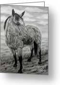 Cowgirl Prints Greeting Cards - The trail of a Buckskin Greeting Card by Lucka SR