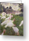 Animals Greeting Cards - The Turkeys at the Chateau de Rottembourg Greeting Card by Claude Monet