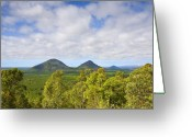 Queensland Photo Greeting Cards - The Twins Greeting Card by Mike  Dawson