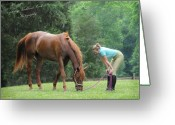 Dressage Photo Greeting Cards - The Unspoken Bond Greeting Card by Terry Kirkland Cook