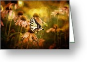 Echinacea Greeting Cards - The Very Young At Heart Greeting Card by Lois Bryan