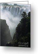 Zambia Photo Greeting Cards - The Victoria Falls Greeting Card by Alex Cassels