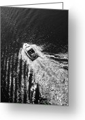 Light And Water Greeting Cards - The Wake from a Birds Eye View  Greeting Card by Heiko Koehrer-Wagner