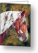 Fine Art - Animals Greeting Cards - The Warriors Horse Greeting Card by Enzie Shahmiri
