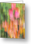 Abstract Impressionism Photo Greeting Cards - The Watercolor garden Greeting Card by Aimelle
