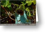Vines Mixed Media Greeting Cards - The Watering Can Mixed Media Greeting Card by Marjorie Imbeau