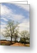Country Dirt Roads Photo Greeting Cards - The Way There Greeting Card by Jan Amiss Photography