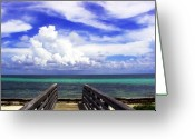 Florida Beaches Greeting Cards - The Way to the beach 2 Greeting Card by Susanne Van Hulst