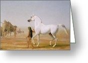 Grey Clouds Greeting Cards - The Wellesley Grey Arabian led through the Desert Greeting Card by Jacques-Laurent Agasse
