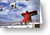 Vacationers Greeting Cards - The Whale Tail Greeting Card by Jason Politte