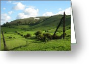 Green Pasture Greeting Cards - The White Horse Westbury England Greeting Card by Kurt Van Wagner