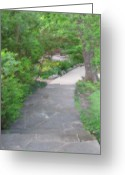 Texas.photo Photo Greeting Cards - The Winding Path Greeting Card by Shawn Hughes