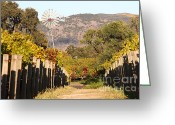 Walk Way Photo Greeting Cards - The Windmill at The Old Vineyard Greeting Card by Wingsdomain Art and Photography