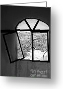 Window Panes Greeting Cards - The Window Greeting Card by Cheryl Young
