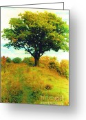 Woodlands Mixed Media Greeting Cards - The Witness Tree Greeting Card by Michael Klein