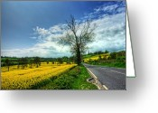 Flowers Pictures Greeting Cards - The Yellow Brick Road Greeting Card by Kim Shatwell-Irishphotographer