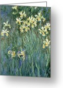 Monet Greeting Cards - The Yellow Irises Greeting Card by Claude Monet