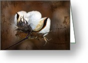 Brown Digital Art Greeting Cards - Them Cotton Bolls Greeting Card by Kathy Clark