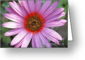 Dwell Greeting Cards - There is nothing else to say Greeting Card by Kezza  