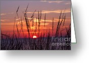 Chevalier Greeting Cards - There you were at Dawn Greeting Card by Elizabeth Chevalier