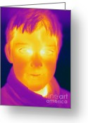 Human Being Photo Greeting Cards - Thermogram Of A Boy Greeting Card by Ted Kinsman