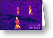 Human Being Photo Greeting Cards - Thermogram Of People Walking Greeting Card by Ted Kinsman