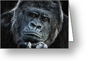 Ape. Great Ape Greeting Cards - thinking about U Greeting Card by Joachim G Pinkawa