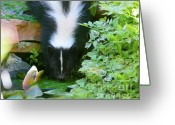 Colorado Creatures Greeting Cards - Thirsty Skunk Greeting Card by Crystal Garner